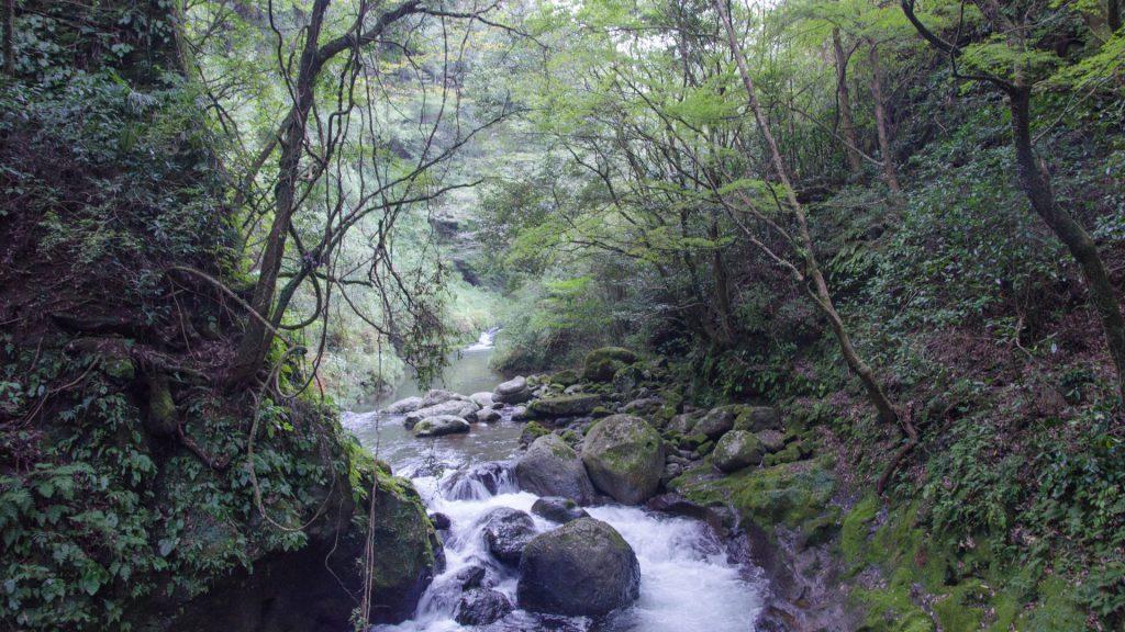 Schlucht in Takachiho Japan