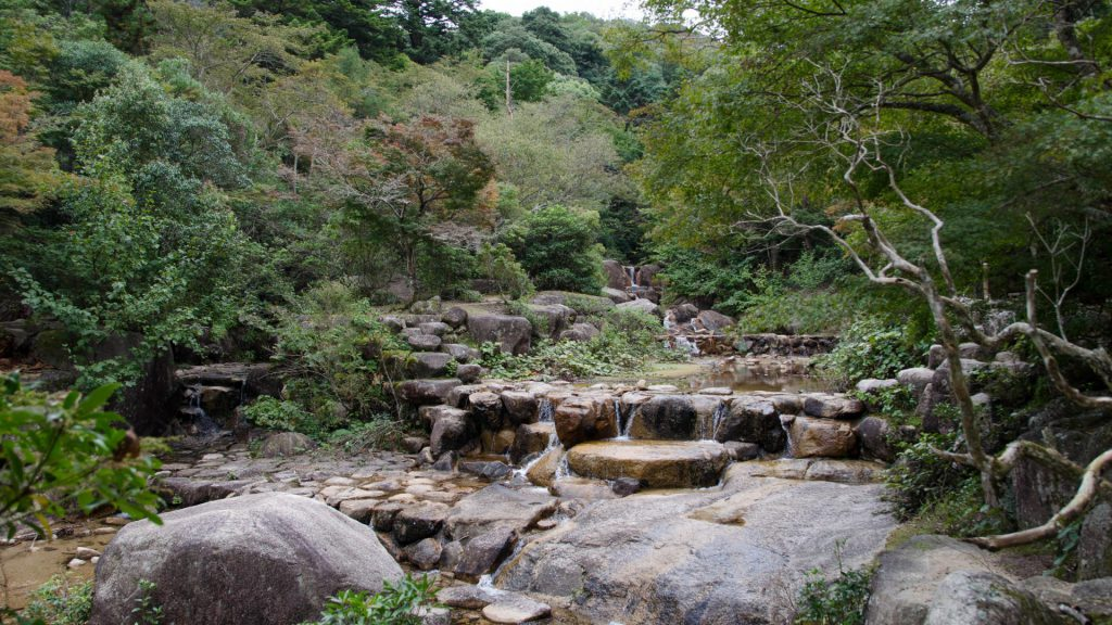 Strahlende Natur in Miyajima Japan