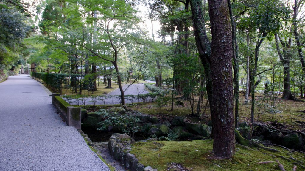 Wald in Ise in Japan